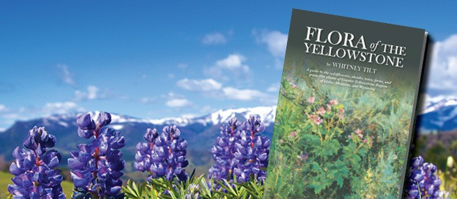 Flora_Book2